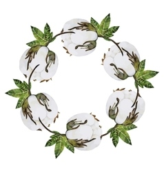Watercolor cotton wreath vector