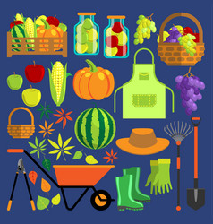 harvest flat set vector image