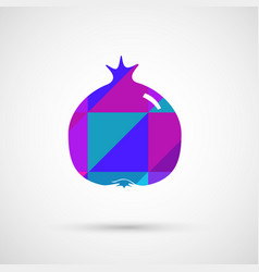 juicy pomegranate and its half vector image