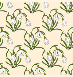 Modern with gentle snowdrops vector