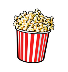 cinema popcorn in a big red and white striped vector image vector image