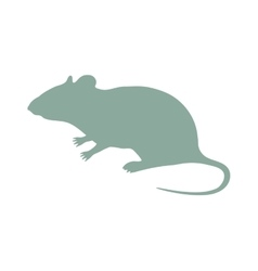 Wild rat mouse animal flat silhouette vector