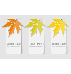 Autumn leaves infographic templates for business vector