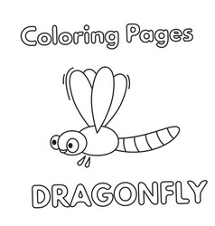 cartoon dragonfly coloring book vector image vector image