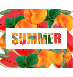 Summer appricot and watermelon background pattern vector