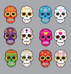 Day of the dead skulls vector