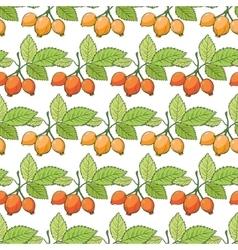 Rosehip sosa berries stripes seamless vector