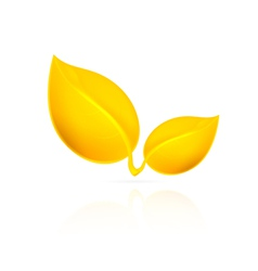 Yellow leaves on white background vector
