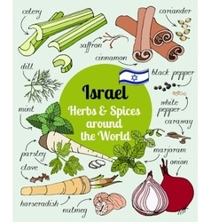 Israel herbs and spices vector