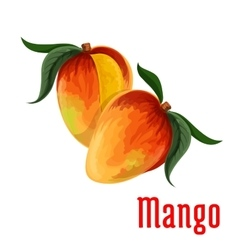 Mango fruit icon for food juice packaging design vector image