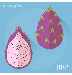 Pitaya icon vector image vector image