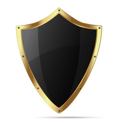 Glittering black shield with gold body vector
