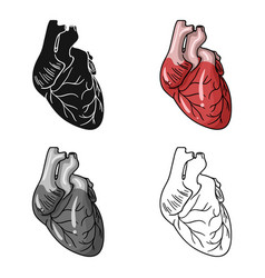 Human heart icon in cartoon style isolated on vector