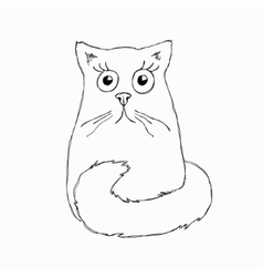 Funny Surprised Cat vector image