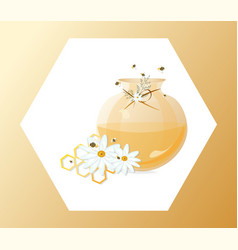 Honey and chamomile in a jar vector