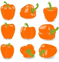 Pepper set of orange peppers vector image