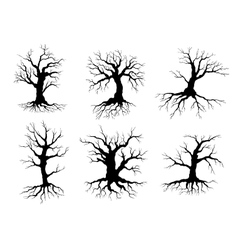 Old tree icons silhouettes with roots vector