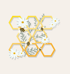 Bees and honeycombs chamomile vector