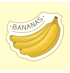Bunch of tropical bananas badge vector