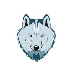 color wolf head logo vector image vector image