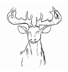 Deer Mascot Head vector image