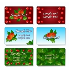 Set of six cards with holly berry and fruit vector