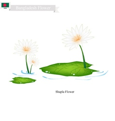 Shapla or water lily the national flower of nepal vector