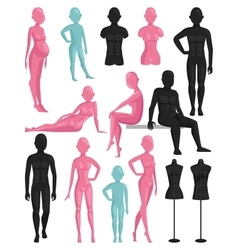 Dummy mannequin model vector image