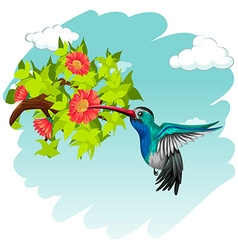 Hummingbird flying around the flowers vector image vector image