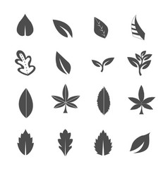 leave icons set vector image vector image