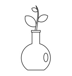 seedling in a vase icon outline style vector image
