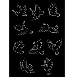 Flying doves with olive tree branches vector