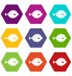 Flounder icon set color hexahedron vector