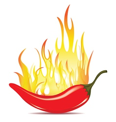 Hot chilli pepper in energy fire vector