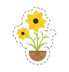 Nasturtium petal spring growing vector