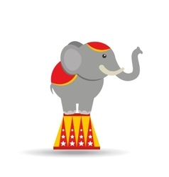Circus animal isolated icon design vector
