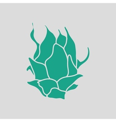 Dragon fruit icon vector