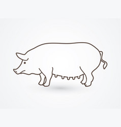 fat pig standing vector image