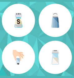 Flat icon sodium set of pour shaker salt and vector