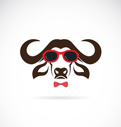 images of buffalo wearing sunglasses vector image