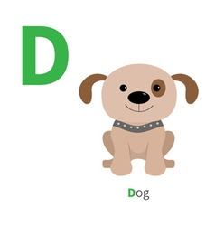 Letter d dog zoo alphabet english abc with animals vector