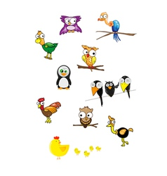 Collection of birds vector image vector image
