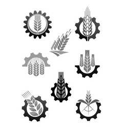 Agriculture icons set of wheat ear and cogwheel vector