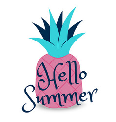 hello summer banner with fruit place for text vector image