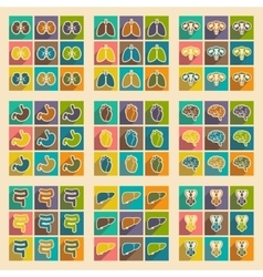 Icons of assembly internal organs in flat style vector