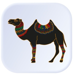 Camel Egypt color vector image