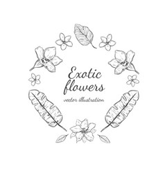 hand drawn floral round wreath concept vector image vector image