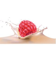beautiful raspberry and milk vector image