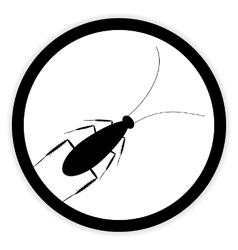 Cockroach button on white vector