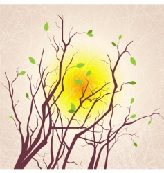 tree branches grungy background vector image vector image